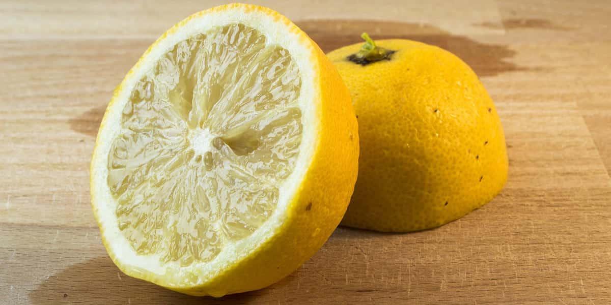 mejores alimentos bajar de peso limon