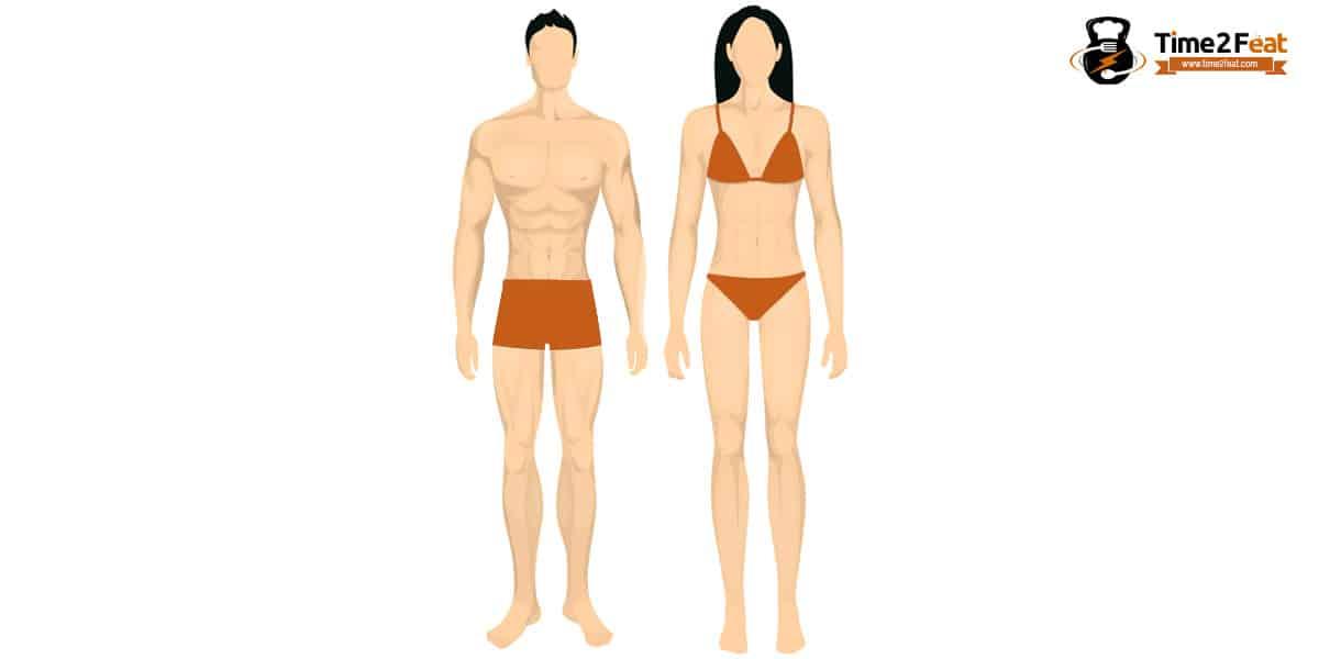 tipos de cuerpo segun biotipo tipo somatico cuerpo ectomorfo