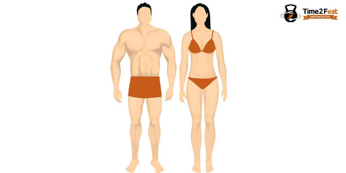 tipos de cuerpo segun biotipo tipo somatico cuerpo endomorfo